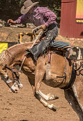 RODEO: MAY 10 Mother Lode Round-up