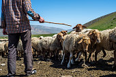 Daily life in the highest village of Azerbaijan